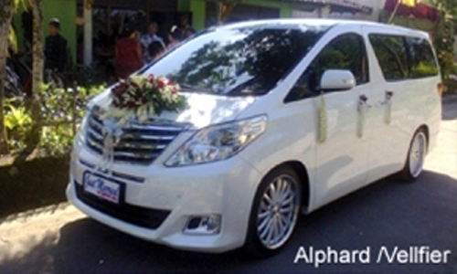 Wedding Car Toyota Alphard Solo
